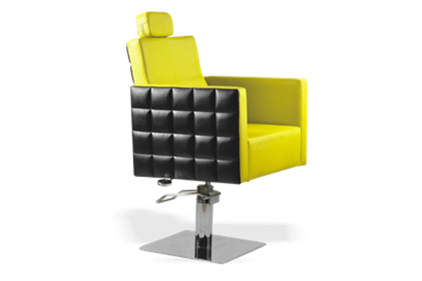Multipurpose Styling Chair